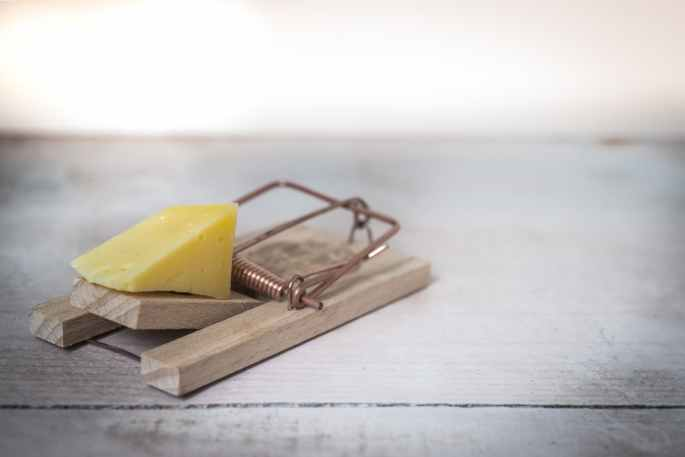 mouse-trap-cheese-device-trap-633881.jpeg
