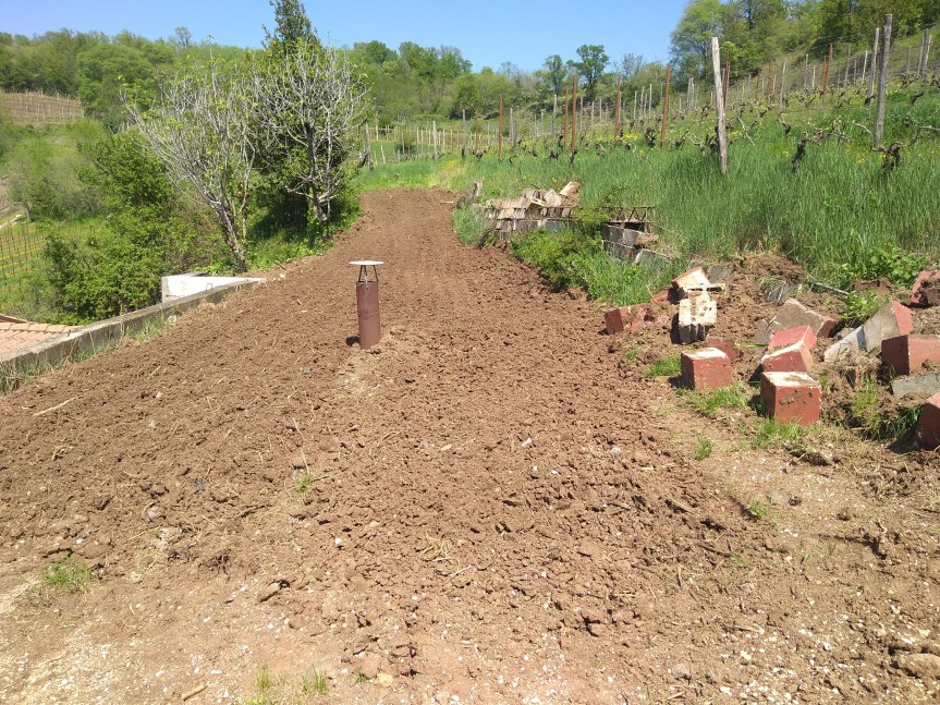 Readying The Vegetable Patch
